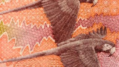 Entendiendo la factura comercial y las diferentes formas de pago en exportación